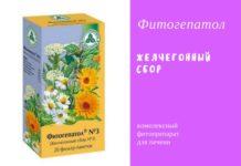 Фитогепатол — фитопрепарат для лечения заболеваний печени
